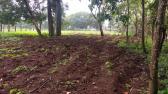 Chácara - Zona Rural - Igarapé - R$  220.000,00