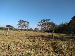Fazenda   Centro (Paraopeba)   R$  1.500.000,00