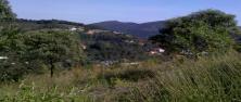 Lotes em Condomínio - Vila Alpina - Nova Lima - R$  1.500.000,00