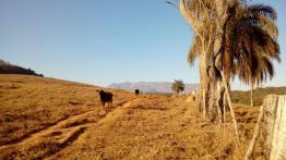 Fazenda   Modelo (Santa Bárbara)   R$  3.500.000,00