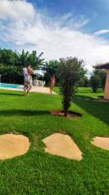 Apartamento - Santa Mônica - Belo Horizonte - R$  218.000,00