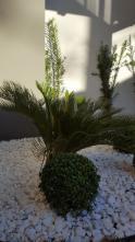 Casa - Residencial Belo Horizonte II - Varginha - R$  330.000,00