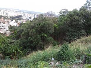 Lote   Ouro Preto (Belo Horizonte)   R$  310.000,00