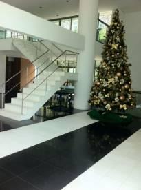 Apartamento   Belvedere (Belo Horizonte)   R$  2.100.000,00