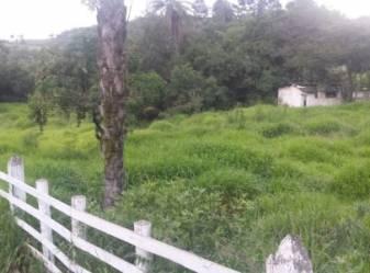 Chácara   Zona Rural (Bonfim)   R$  360.000,00