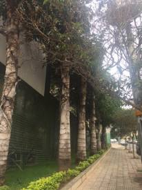 Cobertura   Buritis (Belo Horizonte)   R$  1.100.000,00