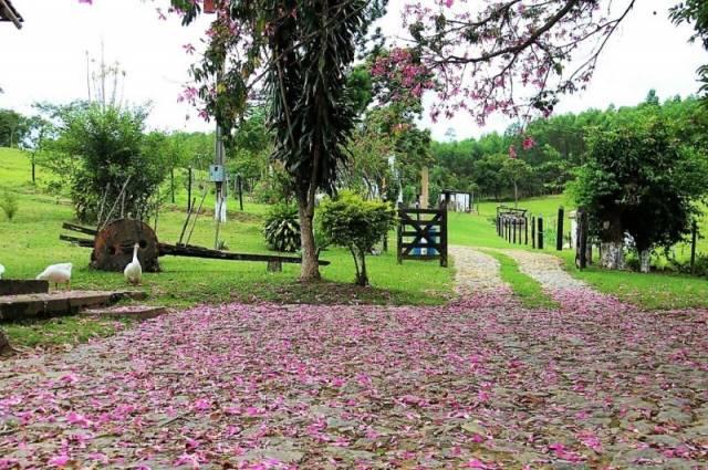 Fazenda   Zona Rural (Catas Altas)   R$  2.000.000,00