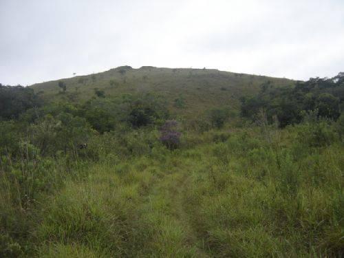 Fazenda   Municipio Padre Brita (Barbacena)   R$  200.000,00