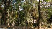 Lotes em Condomínio - Vila Alpina - Nova Lima - R$  700.000,00