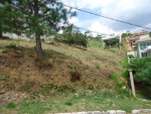 Lotes em Condomínio   Vila Alpina (Nova Lima)   R$  1.000.000,00