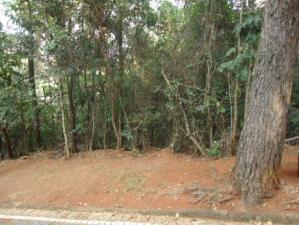 Lotes em Condomínio   Bosque Da Ribeira (Nova Lima)   R$  950.000,00