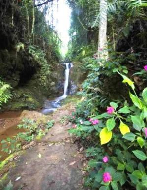 Lotes em Condomínio   Bosque Da Ribeira (Nova Lima)   R$  900.000,00