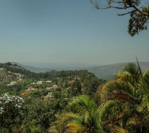 Lotes em Condomínio   Bosque Da Ribeira (Nova Lima)   R$  1.600.000,00