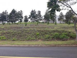 Lotes em Condomínio   Alphaville - Lagoa Dos Ingleses (Nova Lima)   R$  310.000,00